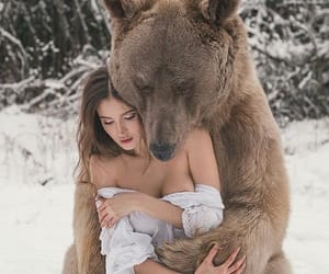 bear, snow, and animal image