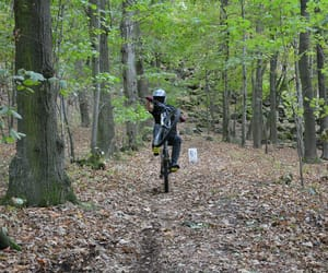 bike, forest, and dh image