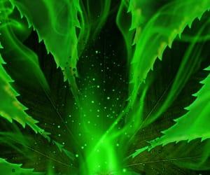 420, cannabis, and hash image