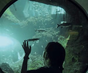 aquarium, girl, and glass image