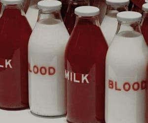 blood, milk, and red image