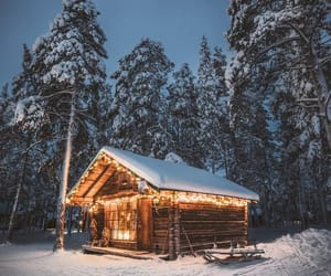 winter, lights, and nature image