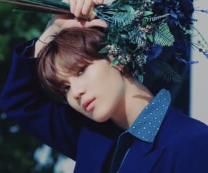 aesthetic, Jonghyun, and Onew image
