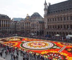 belgium, bruxelles, and carpet image