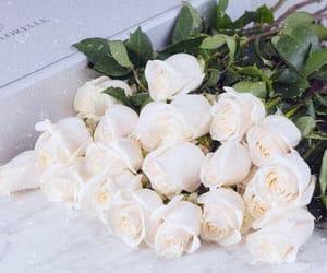 amazing, flowermagic, and flowerstyles_gf image