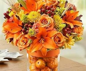 autumn, flowers, and pumpkins image