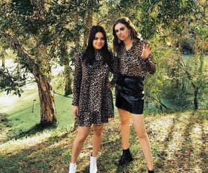 animal print, First Aid Kit, and sisters image