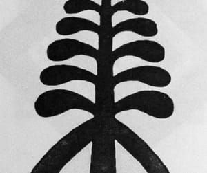 African, fern, and symbol image