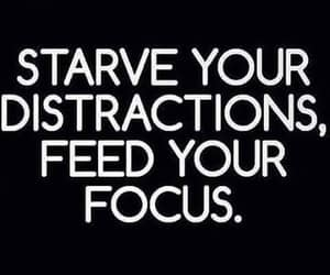 feed, focus, and starve image
