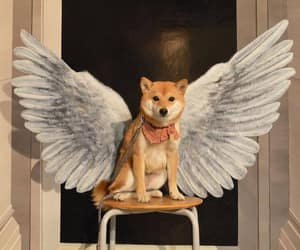 dog, cute, and wings image