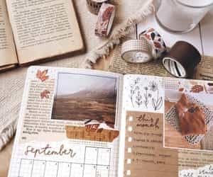 article, autumn, and draw image