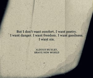 poetry, danger, and quotes image