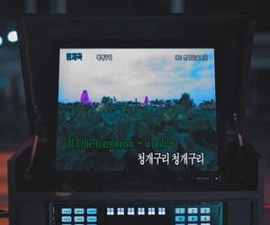 korean, mv, and songlyric image