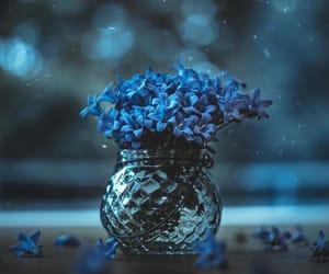 alternative, flower power, and random image