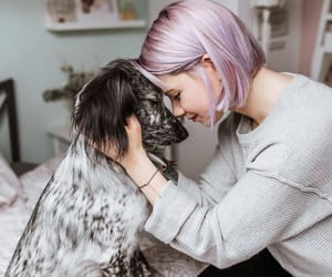 best friend, nature, and puppies image