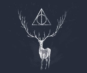 deathly hallows, deer, and harry potter image