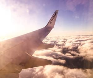 airplane, free, and freedom image