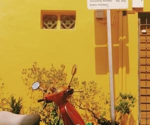 bicycle, bike, and Motor image