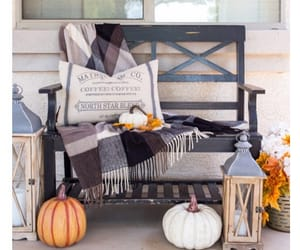 autumn, blankets, and cozy image
