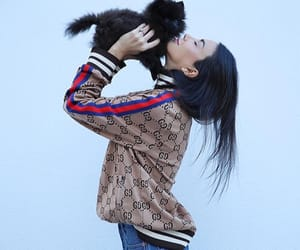 brunette, dog, and gucci image