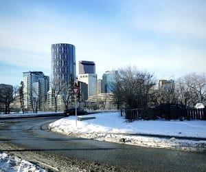 calgary, city, and road image