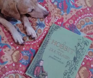 book, cute, and books and dogs image