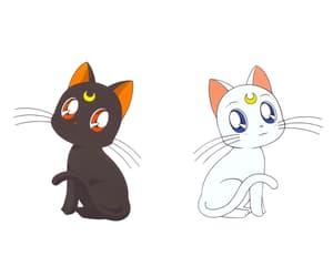 anime, artemis, and cat image