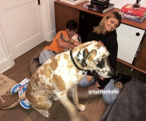 puppy, hayes grier, and father kels image