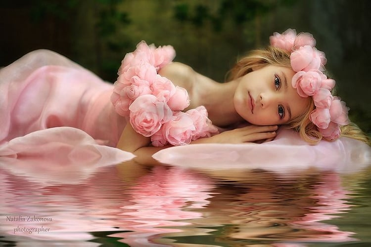 article, rosado, and rosen image