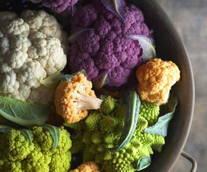 vegetables and colors image