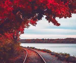autumn and beautiful image