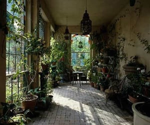 garden, house, and lifestyle image