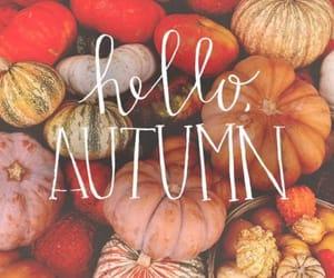 autumn, fall, and hello autumn image
