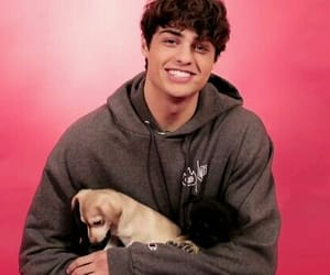 puppy, boy, and noah centineo image