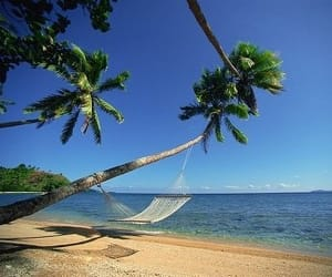 day, goa, and tours image