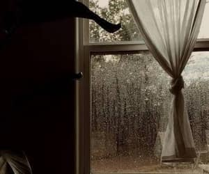home, rain, and window image