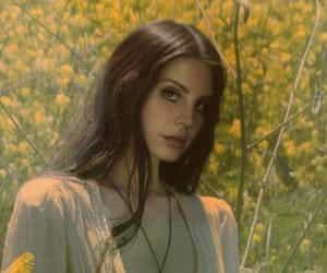 lana del rey, flowers, and vintage image