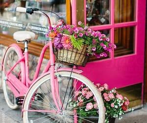 aesthetic, beautiful, and bike image