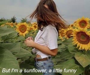 brown hair, quotes, and sunflowers image