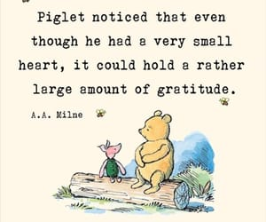 gratitude, heart, and piglet image
