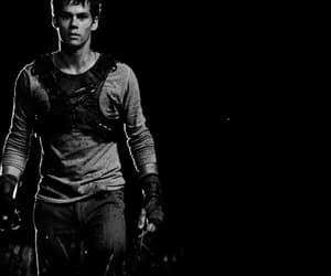 gif, maze runner, and tommy image