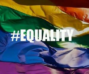 bisexual, gay, and pride image