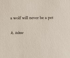 quotes, wolf, and book image