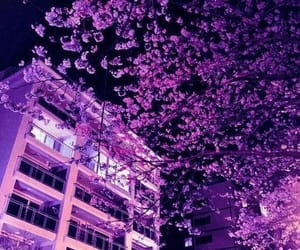 aesthetic, purple, and tree image