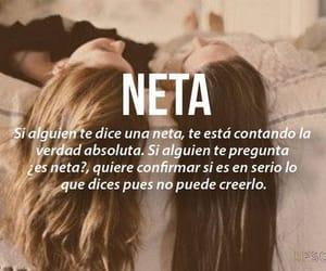 neta and mexico image