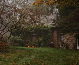 autumn, brick, and fog image