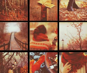 autumn, pictures, and Collage image