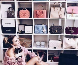 amazing, Dream, and bags image