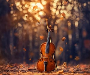 autumn, violin, and leaves image