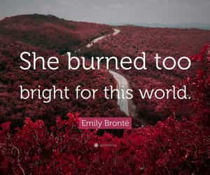 aesthetic, books, and emily bronte image